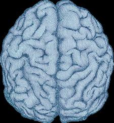 Ecard cerveau, poste de pilotage