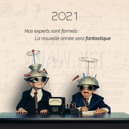 ECVN 35 - carte de voeux imprimable - Experts année fantastique