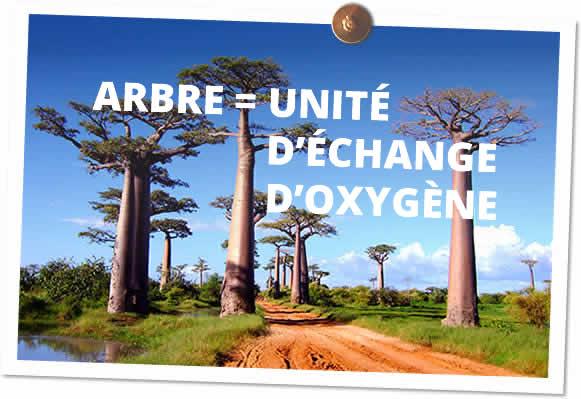 arbre = unité d'échange d'oxygène